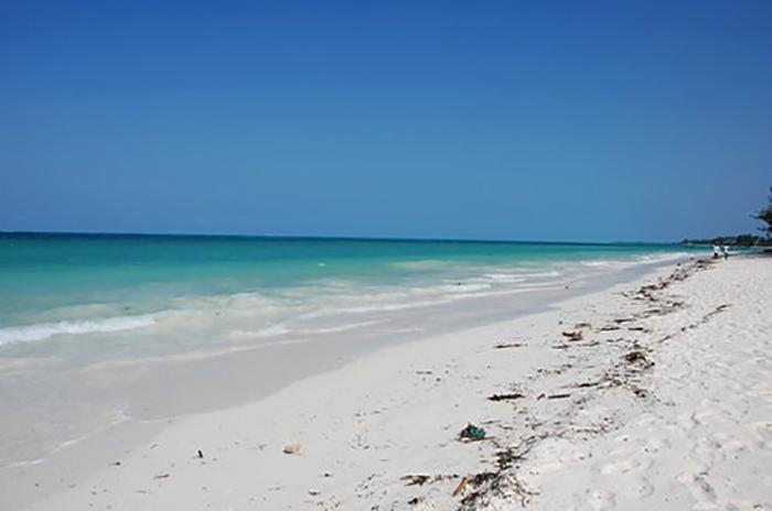 """Пляж """"Джамбиани"""" (""""Jambiani Beach"""")"""