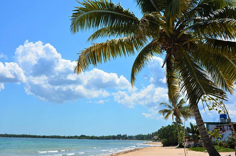 "Пляж ""Ларга"" (""Larga Beach"")"