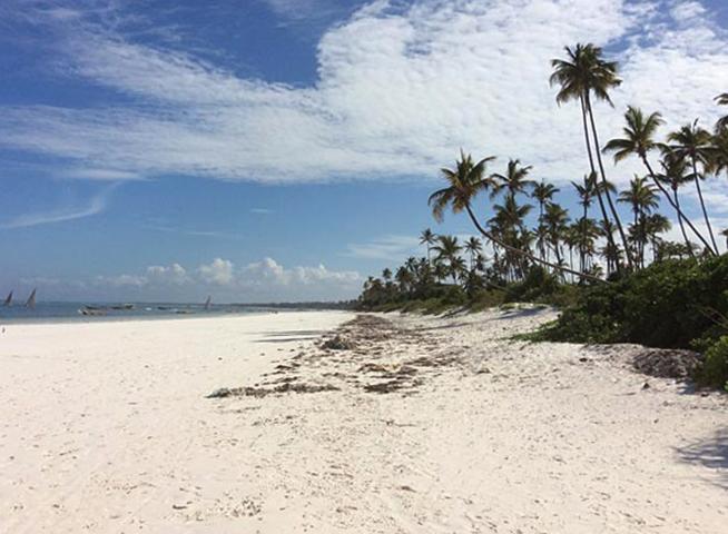 "Пляж ""Матемве"" (""Matemwe Beach"")"