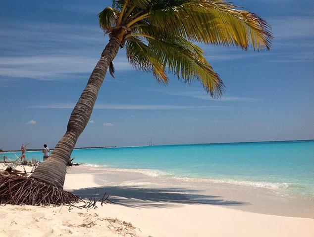 "Пляж ""Сирена"" (""Sirena Beach"")"