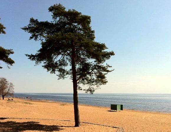 Пляж в Ушково