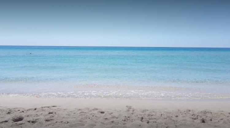 Пляж возле гостевого дома «Бриз»
