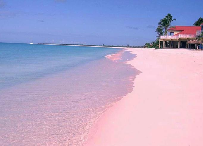 Пинк Сэндс (Pink Sands)