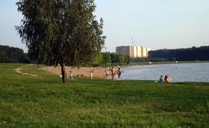 Пляжная зона №4 Цнянского водохранилища