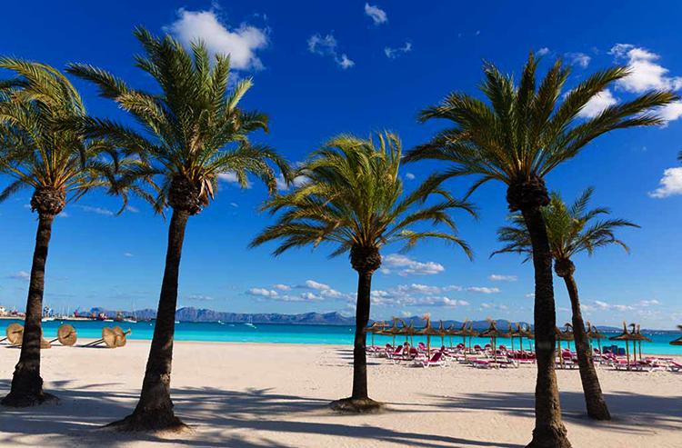 Плайя Алькудия (Playa Alcudia)