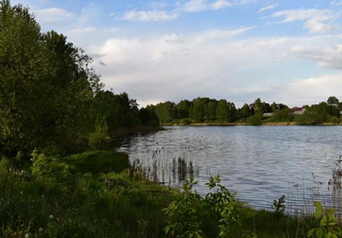Саввинский пруд