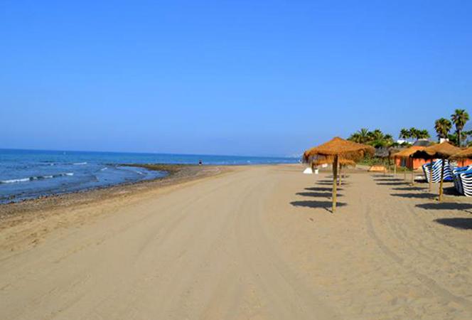 Дель Аликате (Playa del Alicate)