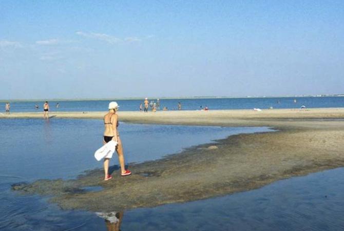 Дикий у Ойбурского озера