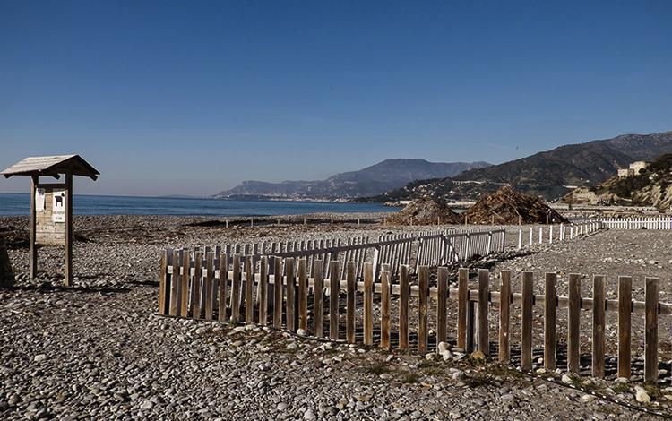 Собачий пляж (Dog Beach)
