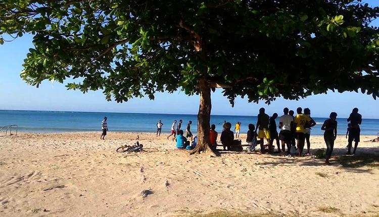 Регги (Reggae Beach)