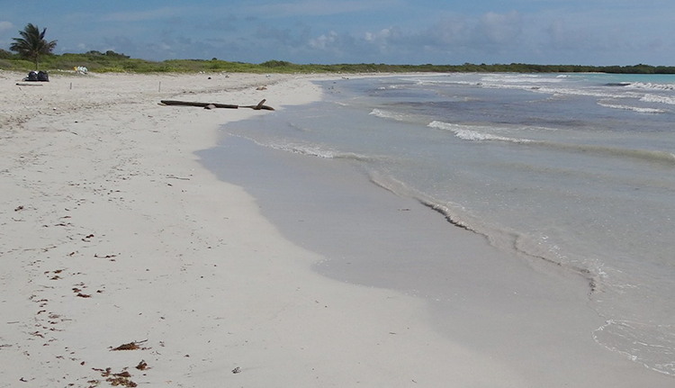 Плайя Варадеро (Playa Varadero)