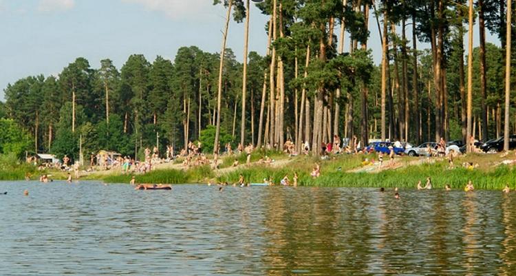 Пляж на реке Вядь