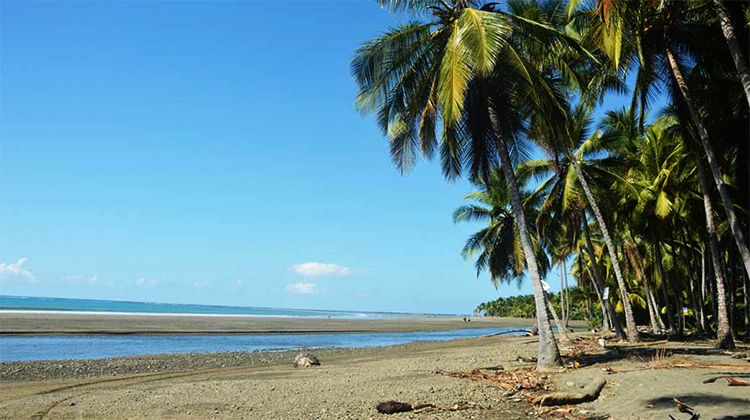 Плайя Доминикаль (Playa Dominicalito)