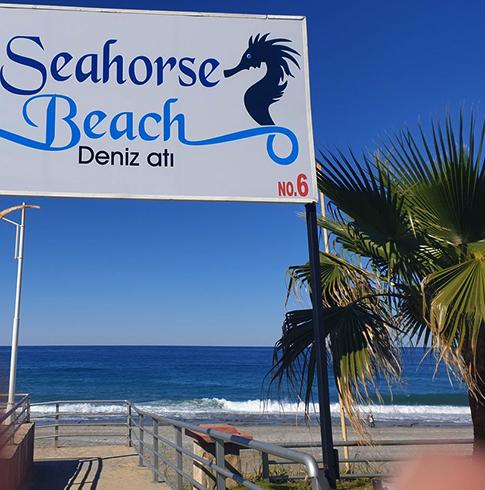 Пляж № 16 «Морские коньки» (Seahorse Beach Deniz ati)