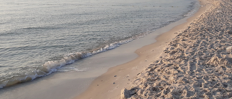 Пляж в порту Сусса